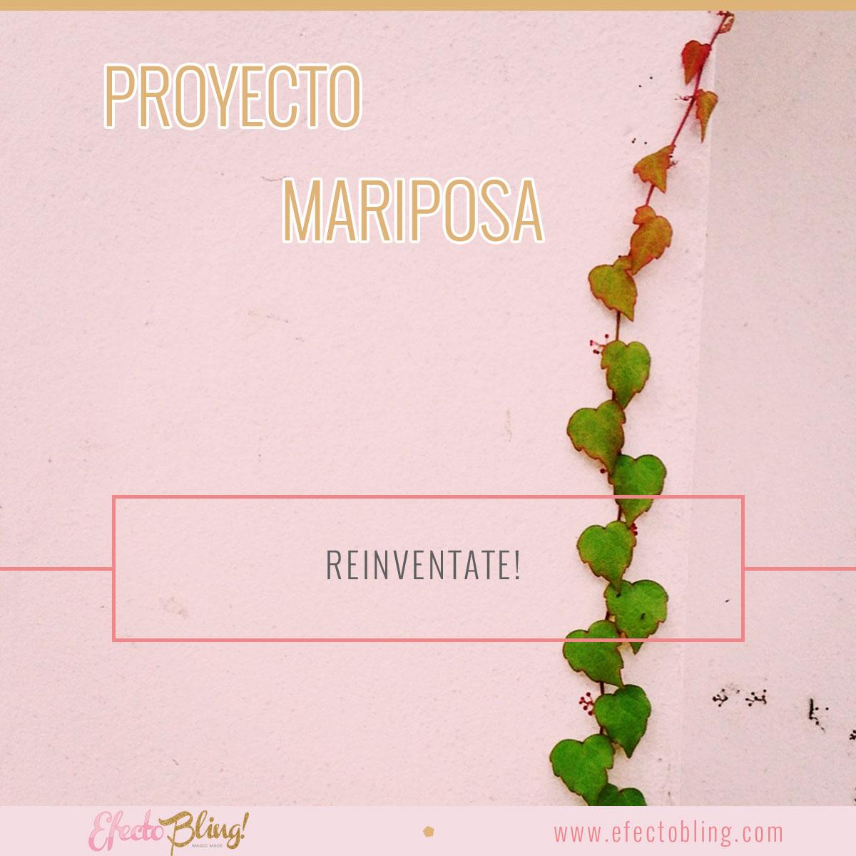 proyectomariposa